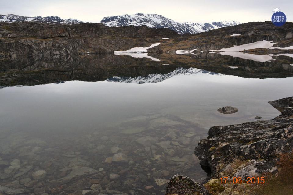 """3)Categoria – Foto """"stile libero"""" Autrice della fotografia: Bianchin Lisa Viaggio in cui è stata scattata: Groenlandia – Le meraviglie della Groenlandia in 8 giorni Data della fotografia: 17/06/2015 Luogo in cui è stata scattata: lungo il percorso tra la Valle dei mille fiori ed il ghiacciaio Kiattut Breve descrizione personale della fotografia:  Che meraviglia! """"La meraviglia è un dono rotondo che va e ritorna fra gli occhi ed il mondo"""". Così narra una famosa filastrocca.  E guardando questa fotografia si comprende il perché.  Dritto o rovescio? Giro o la rigiro? Non importa, perché la sua bellezza è talmente tanta che ti travolge facendoti perdere la nozione se la stai guardando da un lato o da un altro… Ciò che è così travolgente ed unico lo è da qualsiasi punto di vista. Perché lei è la natura. Lei è la vita. E con un sorriso ti sprona dicendoti: """"se da un lato non mi vedi bella, guardami dall'altro e lo sarò di più""""."""