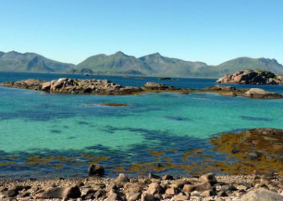 viaje Lofoten Tromso y Ballenas noruega