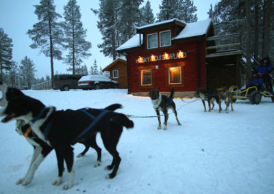 Viaje de hotel a Lofoten y Kiruna, trineo de perros